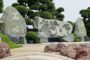 Video: Cận cảnh đá nham thạch nặng 170 tấn ở TP.HCM